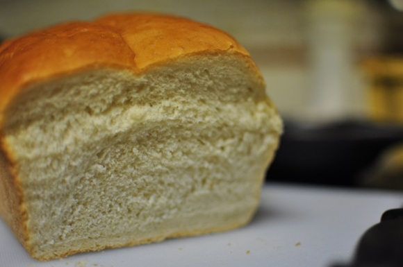 daily dish bread